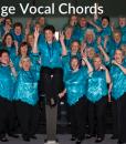 Village Vocal Chords – 2015 Harmony Inc. International Champions