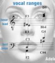 Vocal Ranges Men – Make You Feel My Love
