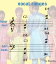 Vocal Ranges Men – Sgt Pepper